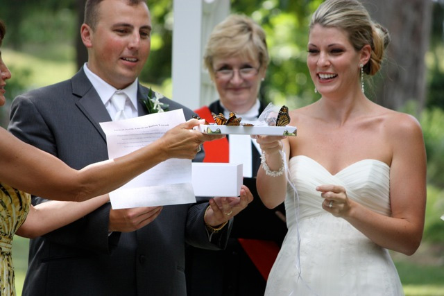 order butterflies for your wedding
